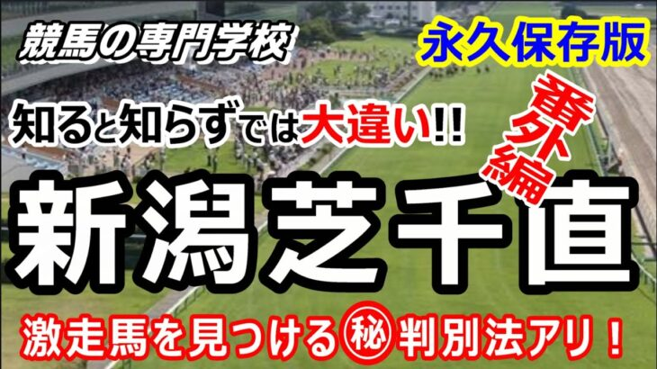 【競馬】日本はここだけ新潟芝1000m直線 初心者にも分かる徹底解説【競馬の専門学校】