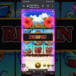 『オンラインカジノ』 1000回し デモ 『HAWAIIAN Dream』