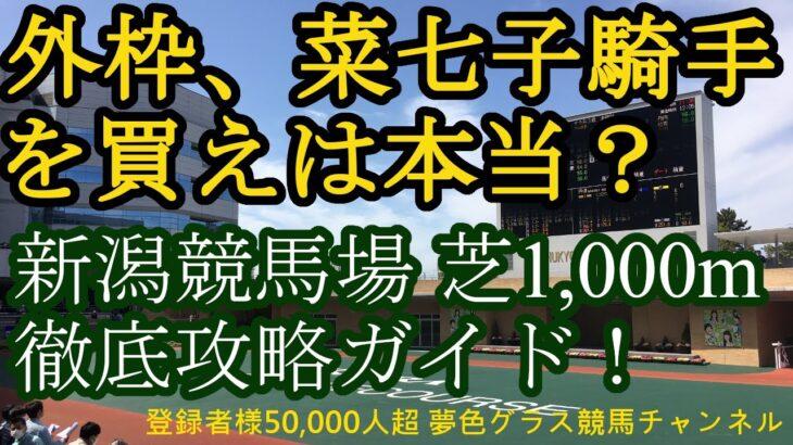 新潟競馬場芝1,000m徹底攻略!外枠を買え、藤田菜七子騎手は上手いは本当?