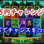 【オンラインカジノ】1万円(100ドル)チャレンジ!コンボをワイルドでチャンスをつかめ!【MULTIFLY(マルチフライ)】