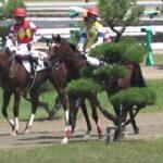 2021/07/24 新潟競馬場 第6レース 新馬戦 アネゴハダ