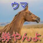 「地方競馬ライブ」資金尽きるまで馬券買います 名古屋、盛岡、大井