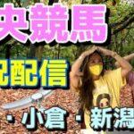 【中央競馬】鬼神指数で予想配信 『札幌・小倉』8月21日(土)