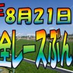 8/21 (土)【中央競馬ライブ配信】JRA全レースぶん回し生配信!今週も札幌、小倉、新潟3場!