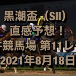 黒潮盃(SⅡ)直感予想! 大井競馬場 第11レース 2021年8月18日