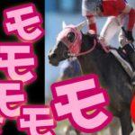 【地方競馬ライブ】スモモモモモモモモを応援しよー!【大井競馬 】