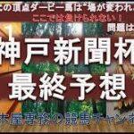 【競馬予想】神戸新聞杯2021 最終予想 日本ダービー馬参戦 あとは相手!? 競馬は走ってみなければわからない…も