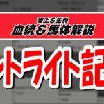 【2021セントライト記念】元競馬記者と血統評論家の重賞血統&馬体談義!!!