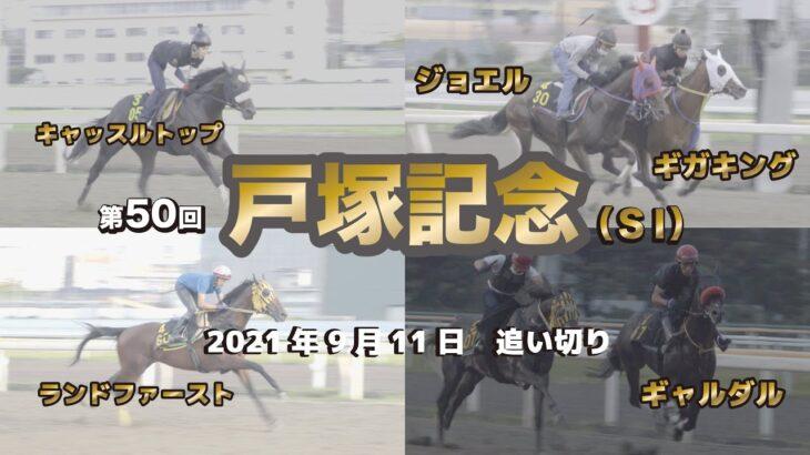 【船橋競馬】第50回 戸塚記念(SⅠ)追い切り調教