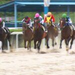 笠松競馬再開の日|リポート動画|NAR公式