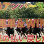 【競馬】3連単&WIN5で勝負した結果すごいことに!?
