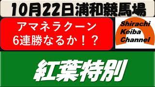 【競馬予想】紅葉特別2021年10月22日 浦和競馬場