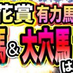 菊花賞【競馬予想】穴馬&大穴馬含む注目馬5頭はコレ!