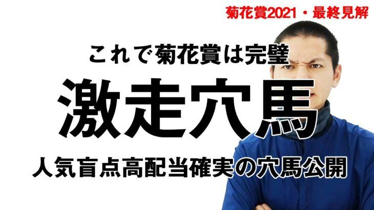 菊花賞-最終見解!能力あるのに人気は無し!必ず買うべき穴馬公開