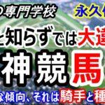 【競馬】阪神競馬場攻略ポイント 初心者の方は特に必見【競馬の専門学校】